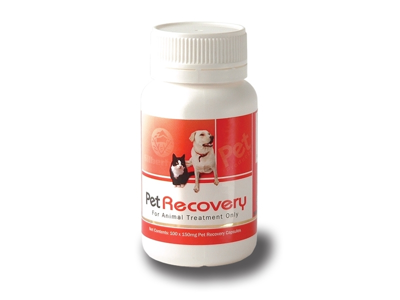 Pet Recovery Formula : 100s